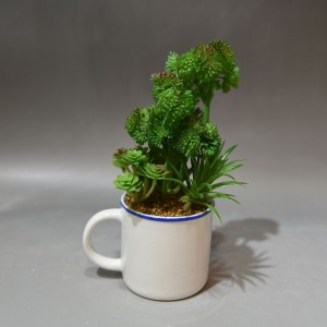 How to Make Coffee Mug Planters