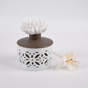 Aroma Scented Essential Oil Reed Diffusers with Rattan Sticks