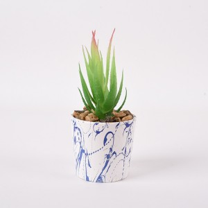Europe New Trend Water Golden Transprinting Personalized Ceramics Succulent Plant Pot