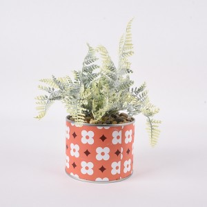 Wild Bracken Fern Natural drird bracken flower for wedding decor