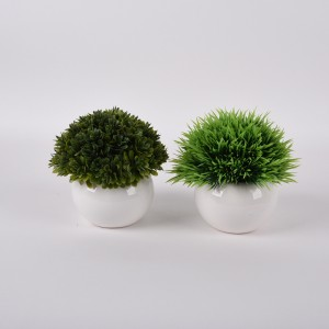Round and small Ceramic Succulent Planter Animal Plant Pot  Succulent Planter Flower